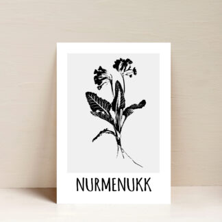 poster nurmenukk eesti