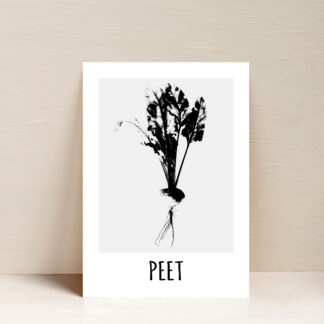peet poster