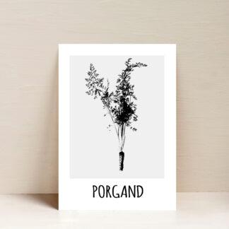 porgand poster