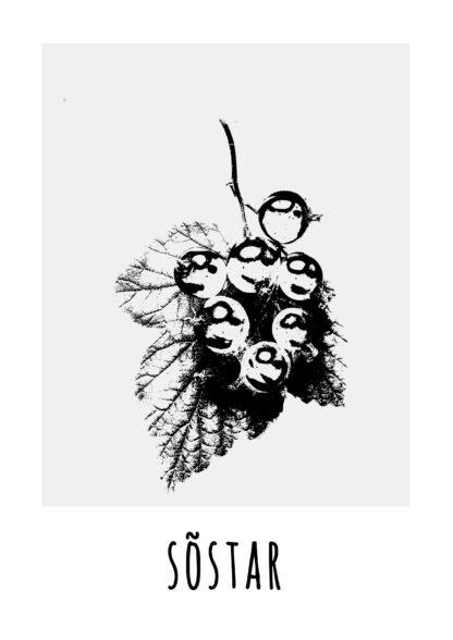 fotoposter eesti keeles