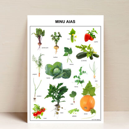 poster minu aias
